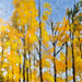 Texas painter Ken Arthur Vermont Woods #1 Painting - Acrylic and Enamel